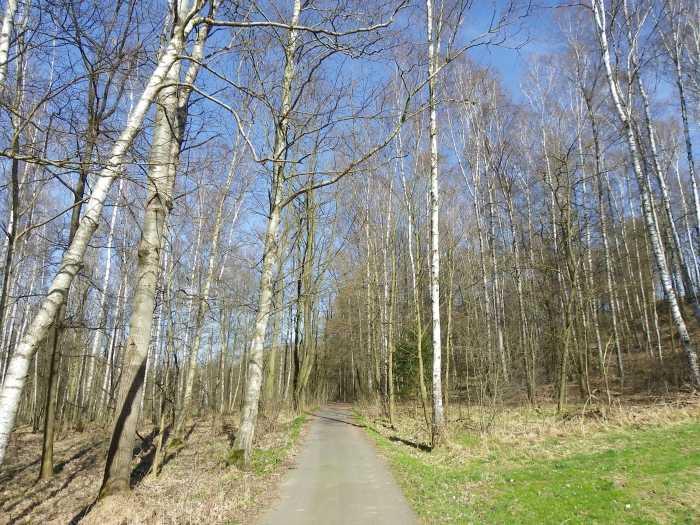 wolkenburg1