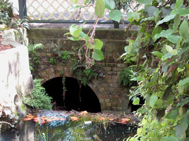 Macquarie Culvert in the Royal Botanic Gardens, Sydney, the oldest bridge in Australia. CC via Wikipedia