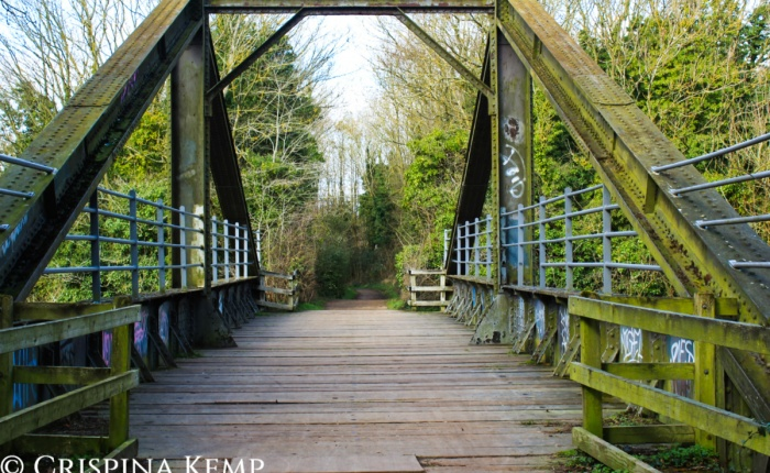 Whose Bridge? – Crimson's Creative Challenge#17