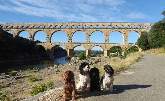A Week in Provence – The Penny Pincher's Guide to Pont duGard